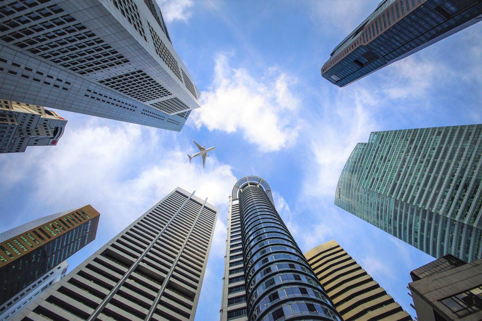 Arereo Che Vola Alto Tra I Grattacieli